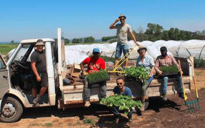Du nouveau à l'Agroécopôle du Domaine de Mirabeau
